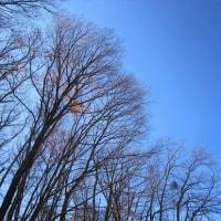 11/29(火)のイキメンニュース~暮らし&身近な法律・判例の情報