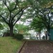 選挙投票~町田市
