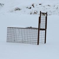 池尻の唐笠松 冬バージョン in 熊本・山都町