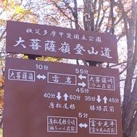 ひまわり大菩薩峠ツアー