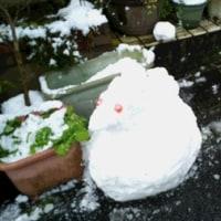 朝から雪だるま作りにはげみました(笑)