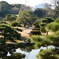 清澄庭園 冬景色