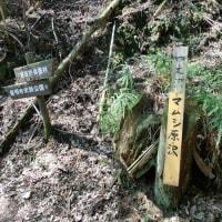 2017-07 最明寺史跡公園5
