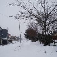 予報的中!雪が降って来ました