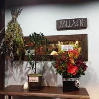 芝・「BALLARIN」(イタリアン)