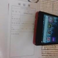 Diary:Rabbitになった僕の写真~電話を変えた!