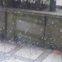 雨だれの 半球7秒 命尽き