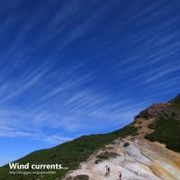 風の流れに身を任せ。