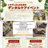明後日の 6/20(火)は<イタグレのためのデンタルケアイベント > @ DOX!