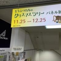 「どうぶつたちのクリスマスツリー」パネル展開催中!!