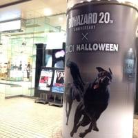 丸井水戸店 ハロウインスコーン販売中 Twitterのフォロー&リツイートで・・・!!
