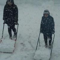 大雪と除雪