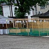 茅の輪くぐり(浅草神社)