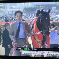 健脚ノルディックウォーキング:日本ダービー、レイデオロ優勝!