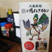 18時以降「鴨ねぎうどん」が半額(2月7~9日)@丸亀製麺