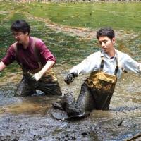 菩提樹池のかいぼり ②