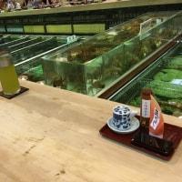 福岡の人気店『稚加栄』に行ってきました🐟🐟🐟