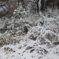 更に積もった雪