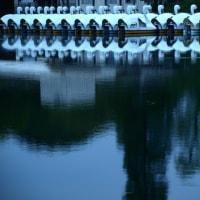 5月の心地よい風が吹く夕暮れの吉祥寺・井の頭公園から