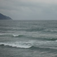 3月23日 冷たい雨
