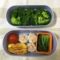 今日のダイエット弁当11