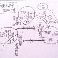 日本農業(4)とTPPの関税撤廃との関係