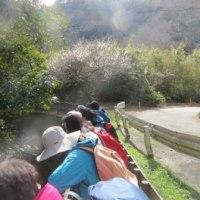 アナウンサーから学ぶハイキングat 大楠山