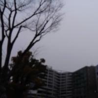 今日の私は846 【3月23日の博多の朝です】