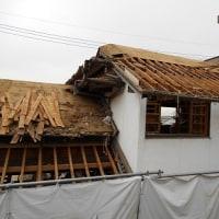 隣家の解体が山場を迎えた