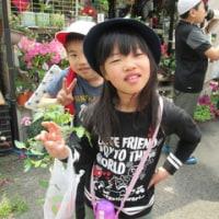 夏野菜の苗を買いに行きました!!!