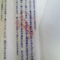 2017・5・25(木)…㈱タカズミ「富山の宝石 白えびうどん」