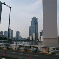 今日の隅田川