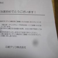 ホワイトアウト~~~(*´Д`)