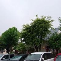 レンガ屋(米子市両三柳)