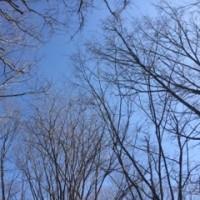 駅前公園で賛美 ☘️ 2017年2月24日