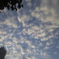 うろこ雲〜高く遠く