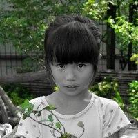 子供のための庭