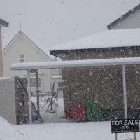雪降り 十勝中部は10cmかな