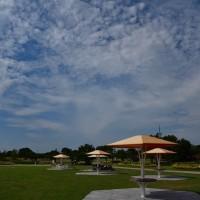 海の中道海浜公園からp1(D810,24-85mm)