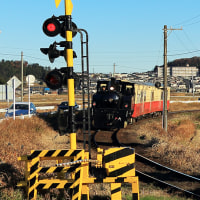 小湊鐵道2016.12 #2  ~ 里山トロッコ列車 ~ 鉄写同好会