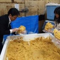 発酵・大醸し祭り