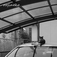 別宅を持つ猫