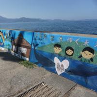 姫島散策4(ヨシ)