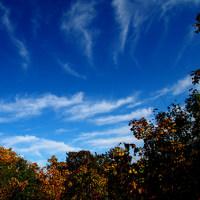 紅葉シーズン2~羊蹄山麓と赤井川