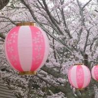 妹背の里 今春最後の桜かな