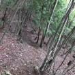 世界遺産大峯奥駆道を歩く  五番関から大峯山へ新緑の奥駈道を往復 2017年7月2日 その4