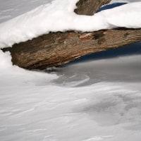 冬の自然湖(Ⅰ)