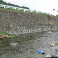 初めての川❗