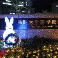 鳥取大学医学部のイルミネーション