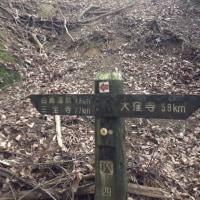 歩いて繋ぐ遍路道-9 春風に吹かれて歩く里山風景